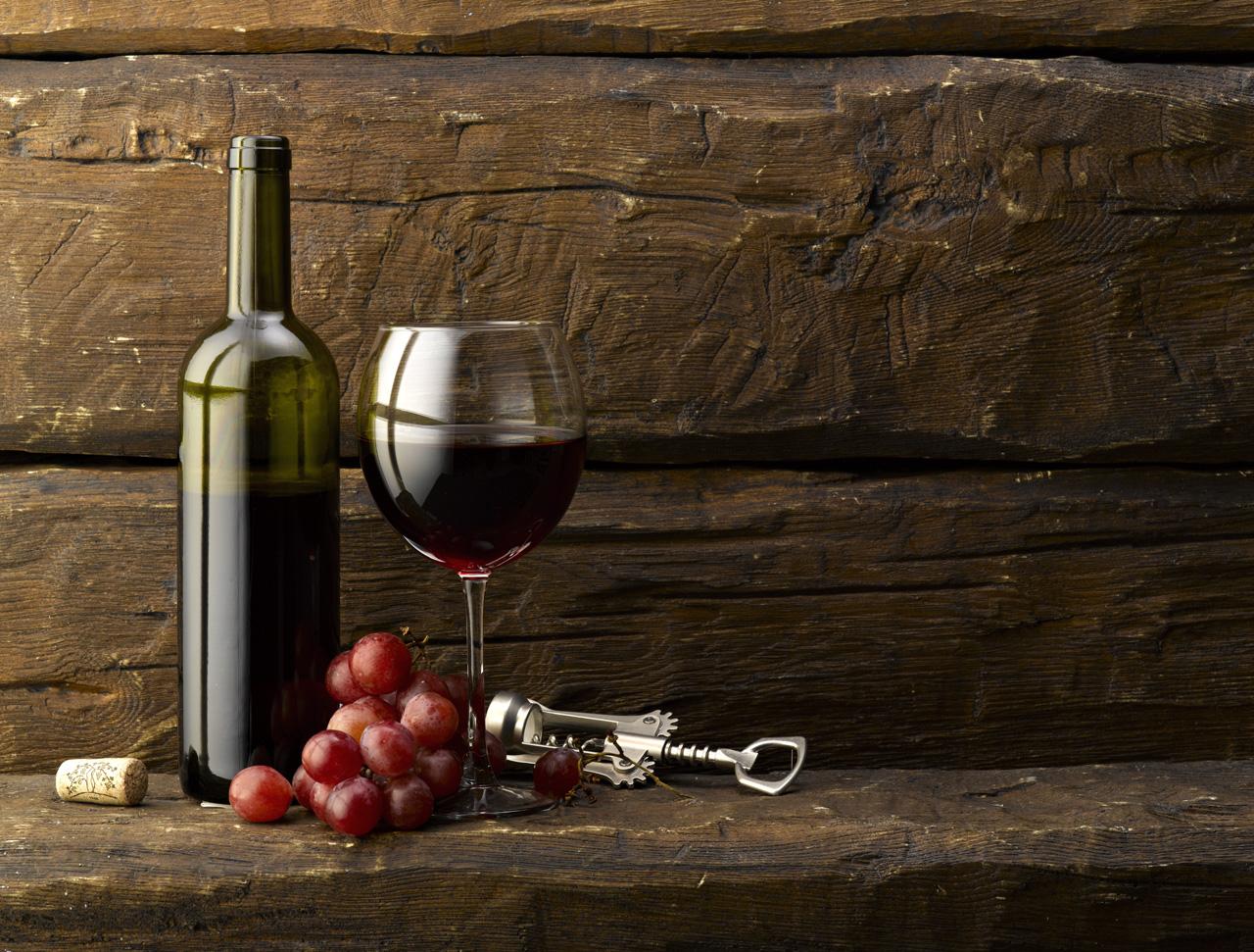 Vin, terroir et tradition dans le sud de la France